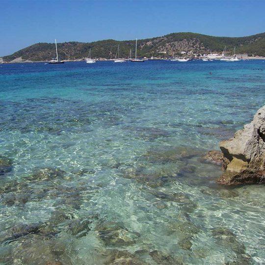 http://www.apartamentosbonsol-ibiza.com/wp-content/uploads/2016/10/Ibiza_playa_de_ses_salines2341-540x540.jpg